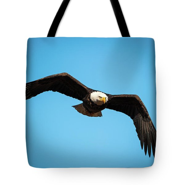 Tote Bag featuring the photograph Bald Eagle In Flight  by Jeff Phillippi