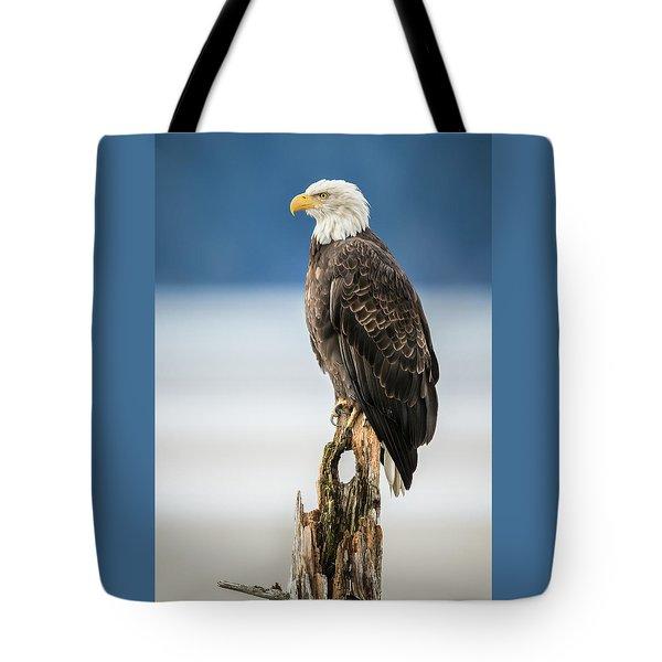 Bald Eagle On Snag Tote Bag