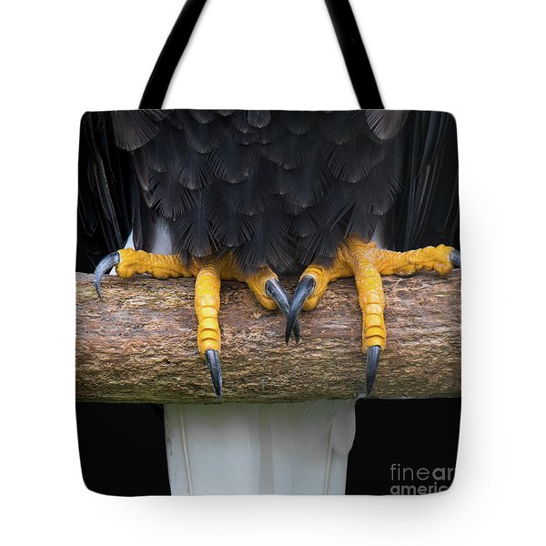 Bald Eagle Talons Tote Bag