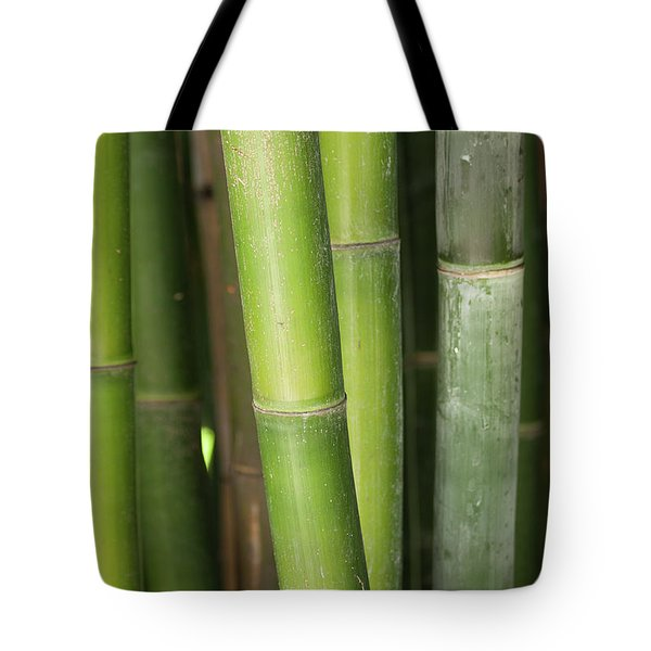 Bamboo Stalk 4057 Tote Bag