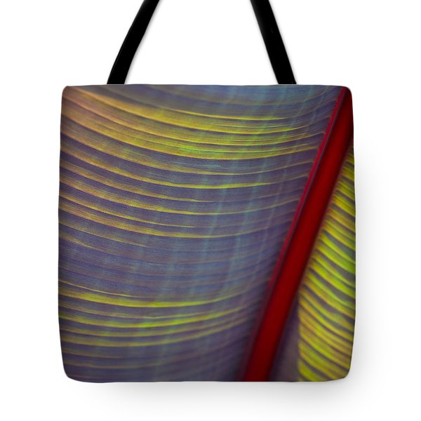 Banana Leaf 8597 Tote Bag