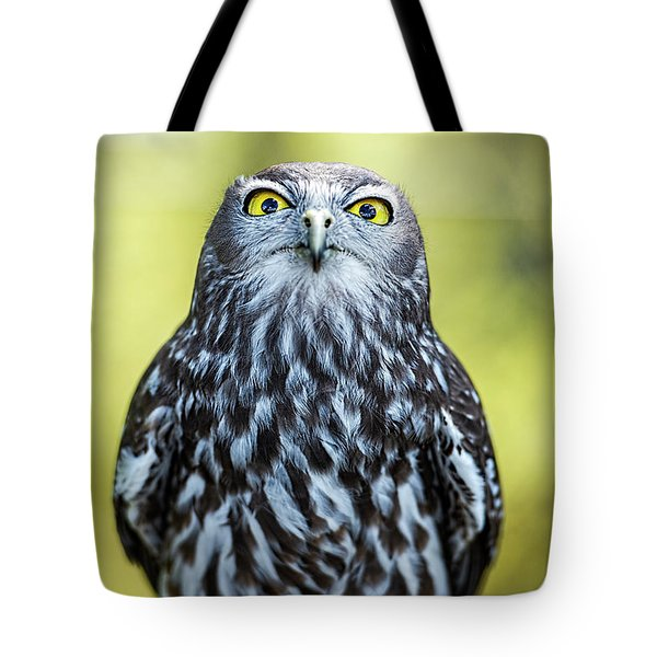 Tote Bag featuring the photograph Barking Owl by Rob D Imagery