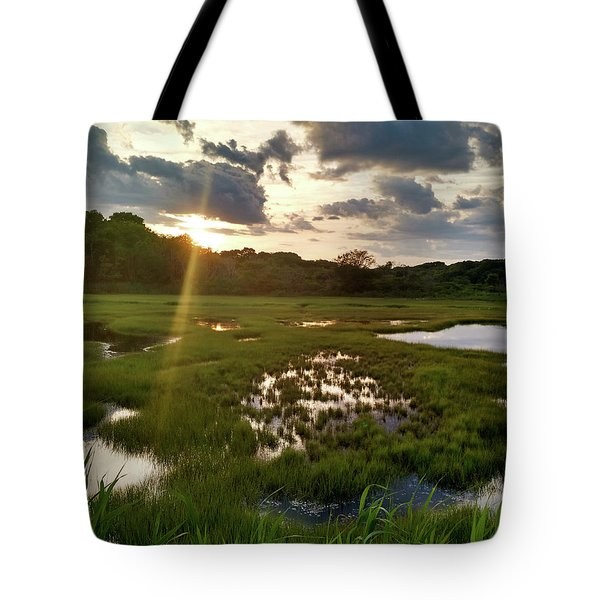 Barn Island Wetlands Tote Bag