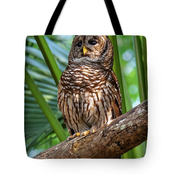 Tote Bag featuring the photograph Barred Owl On Perch by Michael D Miller