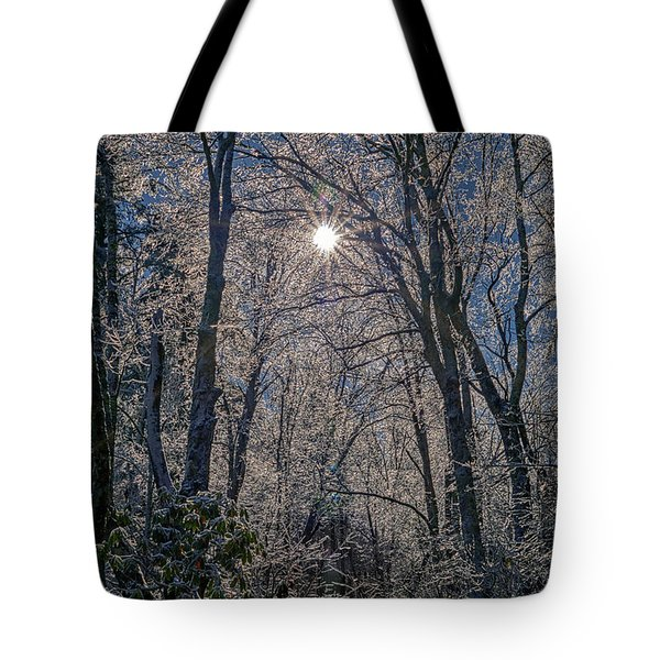 Tote Bag featuring the photograph Bass Lake Frosty by Meta Gatschenberger