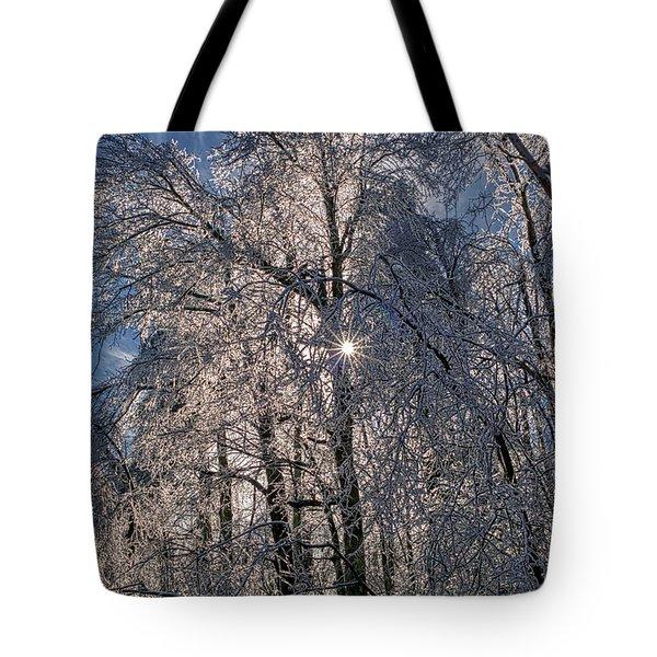 Bass Lake Trees Frozen Tote Bag