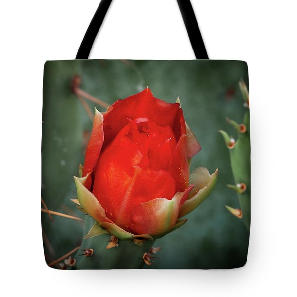 Tote Bag featuring the photograph Be My Valentine by Rick Furmanek