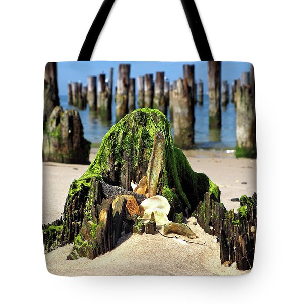 Tote Bag featuring the photograph Beached Walrus At Cape Charles Virginia by Bill Swartwout Fine Art Photography