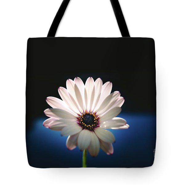 Beautiful And Delicate White Female Flower Dark Background Illum Tote Bag