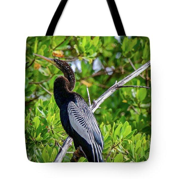 Beautiful Anhinga Tote Bag