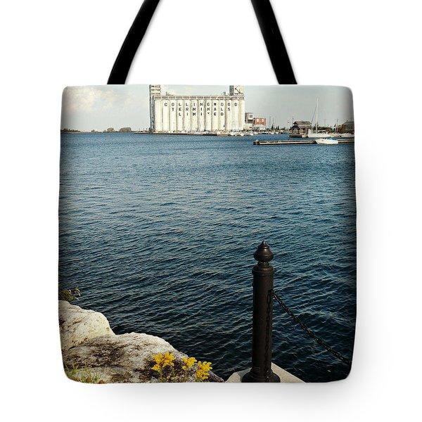Beautiful Bluey Bay Tote Bag