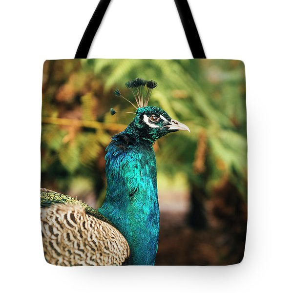 Beautiful Colourful Peacock Outdoors In The Daytime. Tote Bag