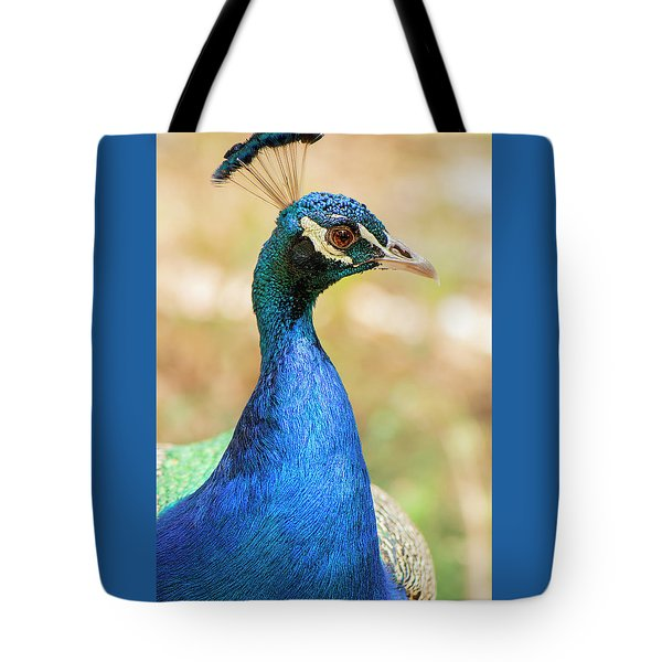 Tote Bag featuring the photograph Beautiful Peacock by Rob D Imagery