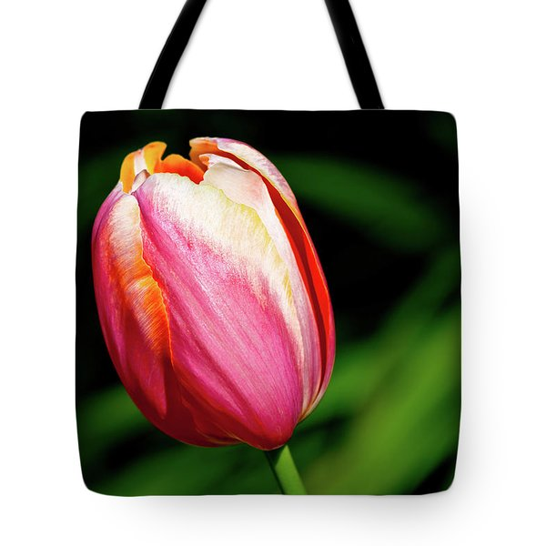 Beauty In Red Tote Bag