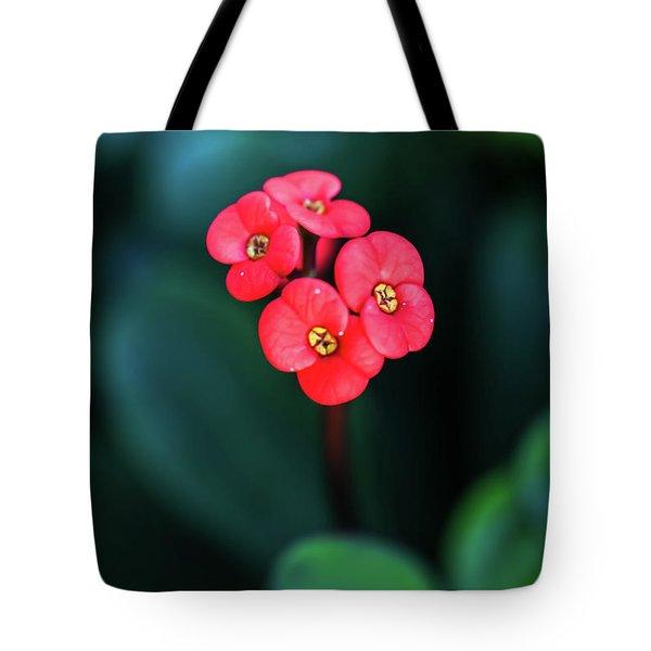Beautiful Summer Flowers Tote Bag