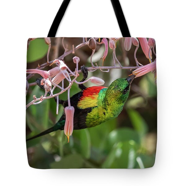 Tote Bag featuring the photograph Beautiful Sunbird by Thomas Kallmeyer