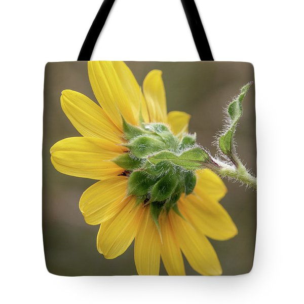 Tote Bag featuring the photograph Beauty From Behind by Teresa Wilson