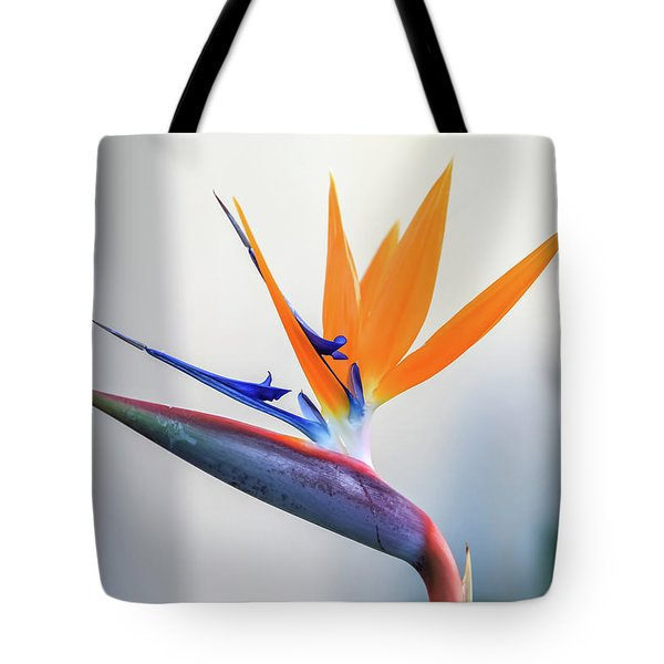 Beauty In Paradise Tote Bag