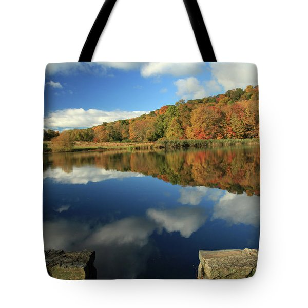 Beauty Of Autumn Tote Bag