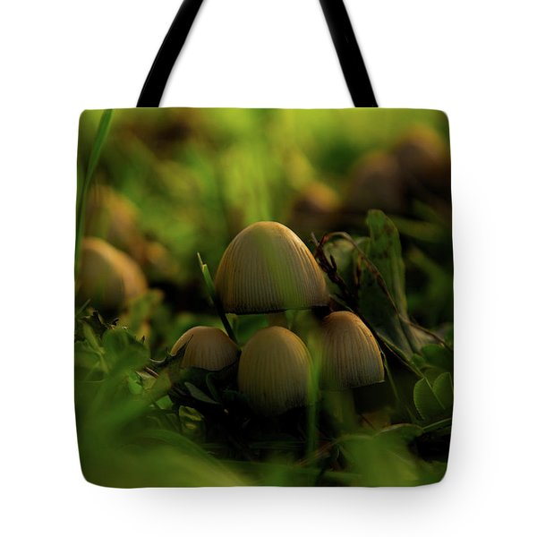 Beauty Of Fungus Tote Bag