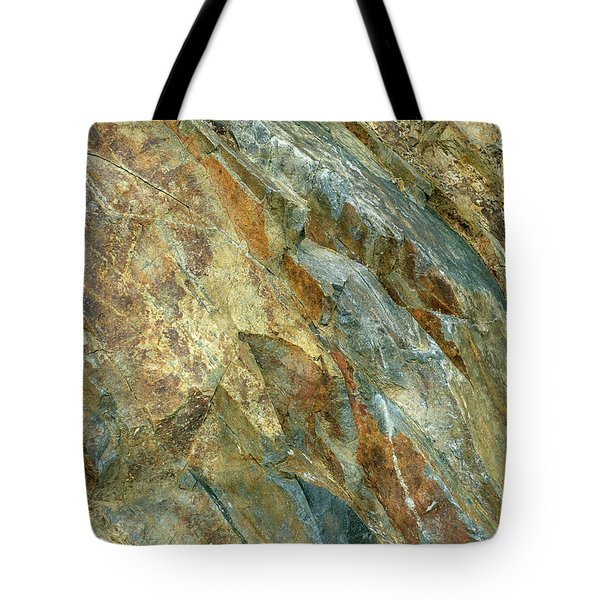 Tote Bag featuring the photograph Bedrock Of Ages 5 by Lynda Lehmann