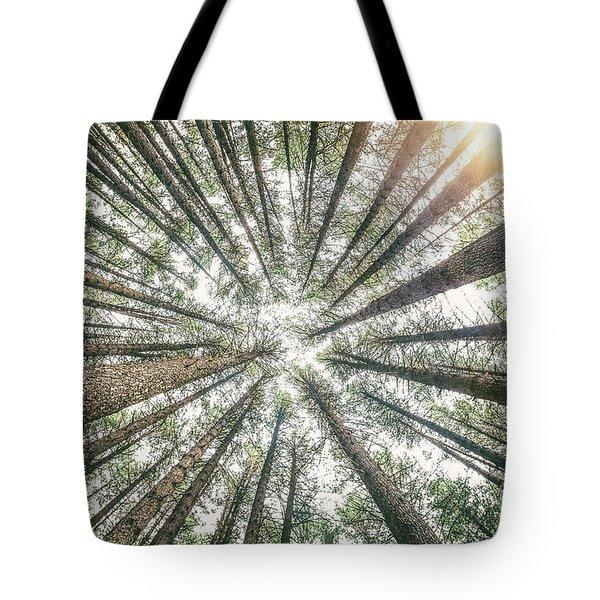 Below The Treetops Tote Bag