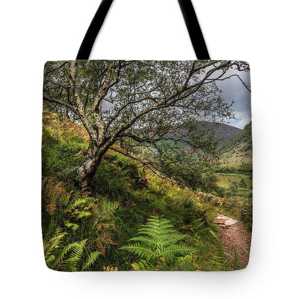 Beneath The Ben Nevis Mountain Tote Bag