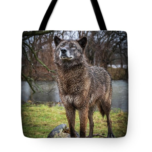 Best Of Show Pose Tote Bag