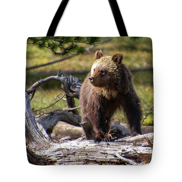 Better View From Here Tote Bag