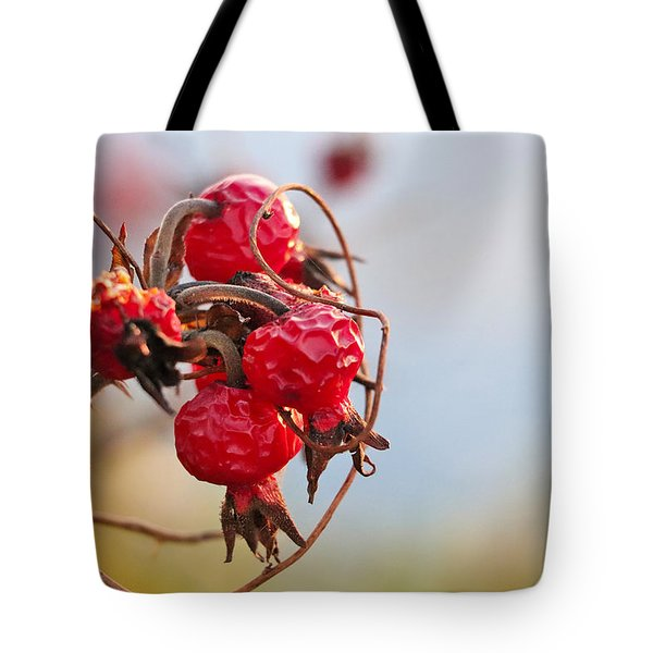 Between Summer And Winter Tote Bag