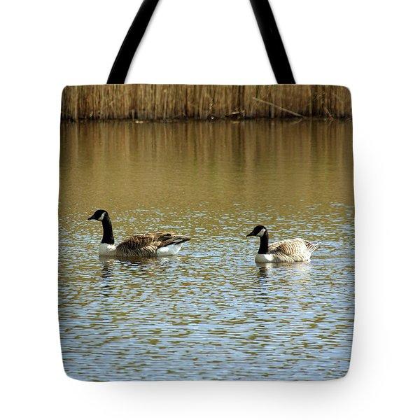 Bidston.  Bidston Moss Wildlife Reserve. Two Geese. Tote Bag