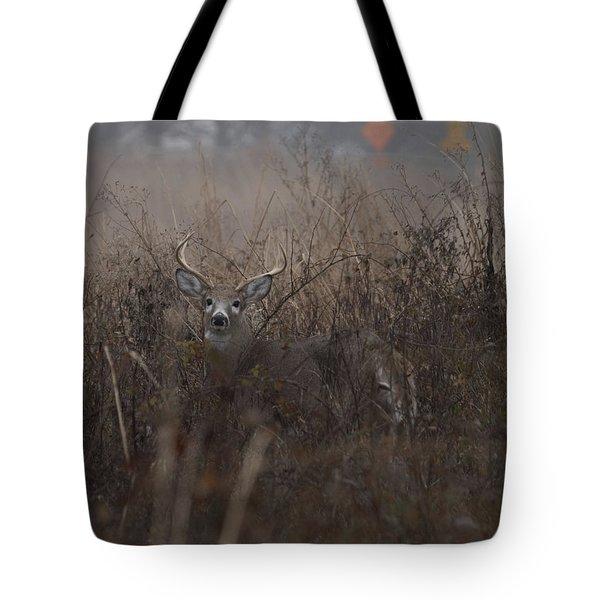 Big Buck Tote Bag