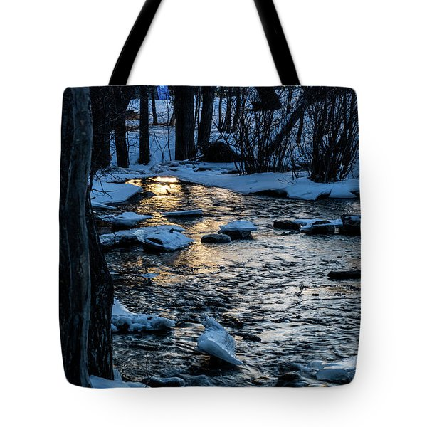 Big Hills Springs Under Snow And Ice, Big Hill Springs Provincia Tote Bag