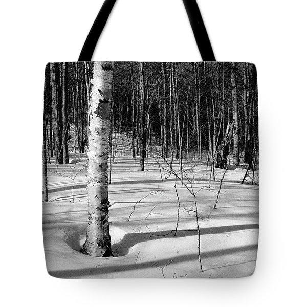 Birch Shadow. Tote Bag