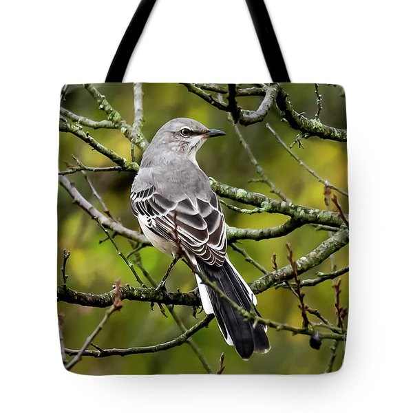 Tote Bag featuring the photograph Mockingbird In Tree by Michael D Miller