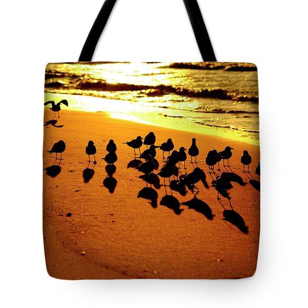 Bird Shadows Tote Bag