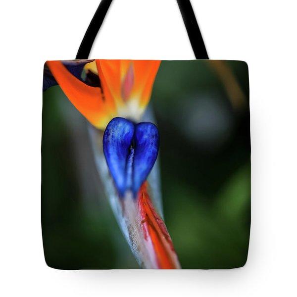 Birds Of Paradise Up Close Tote Bag