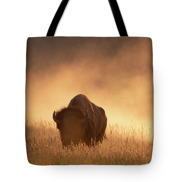 Bison In The Dust 2 Tote Bag