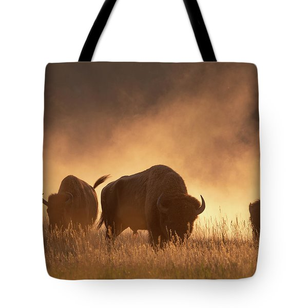 Bison In The Dust Tote Bag