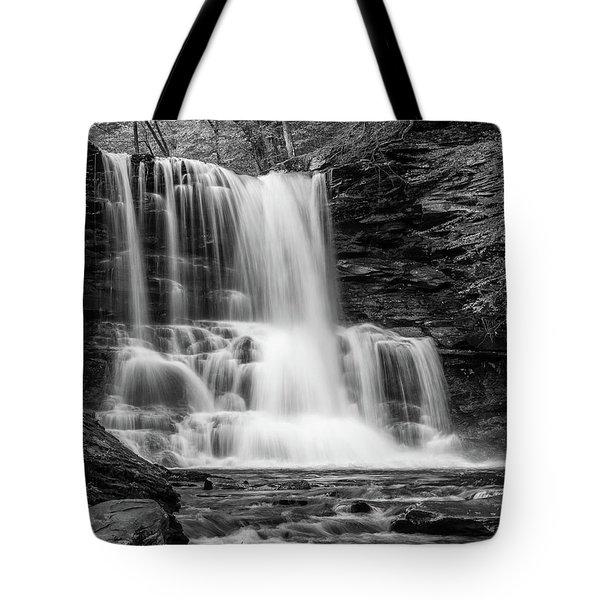 Black And White Photo Of Sheldon Reynolds Waterfalls Tote Bag