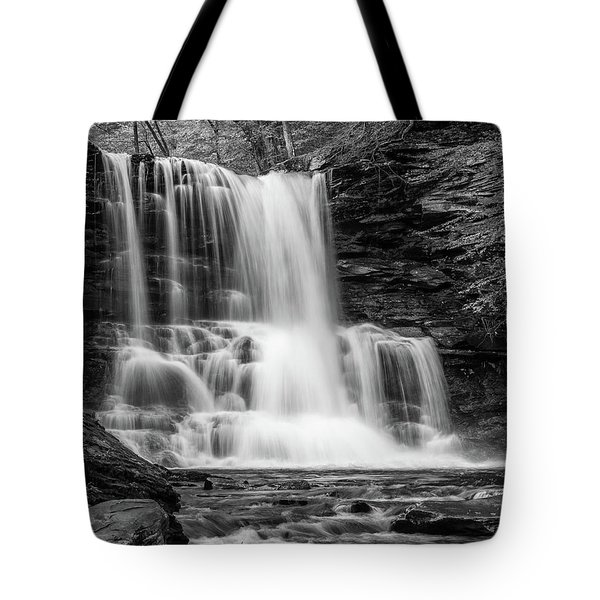 Tote Bag featuring the photograph Black And White Photo Of Sheldon Reynolds Waterfalls by Louis Dallara