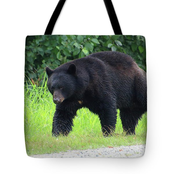 Black Bear Crossing Tote Bag