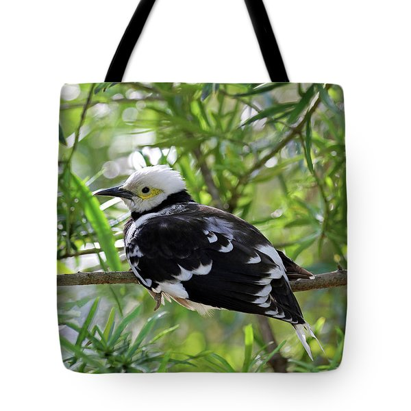 Black Collared Beauty Tote Bag