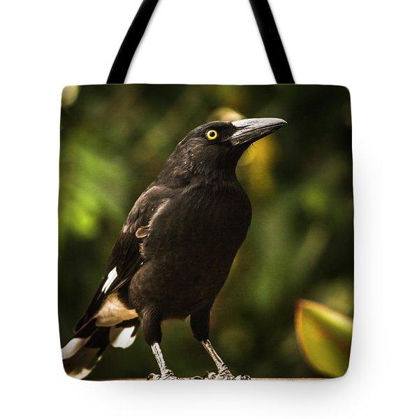 Black Currawong Bird Tote Bag