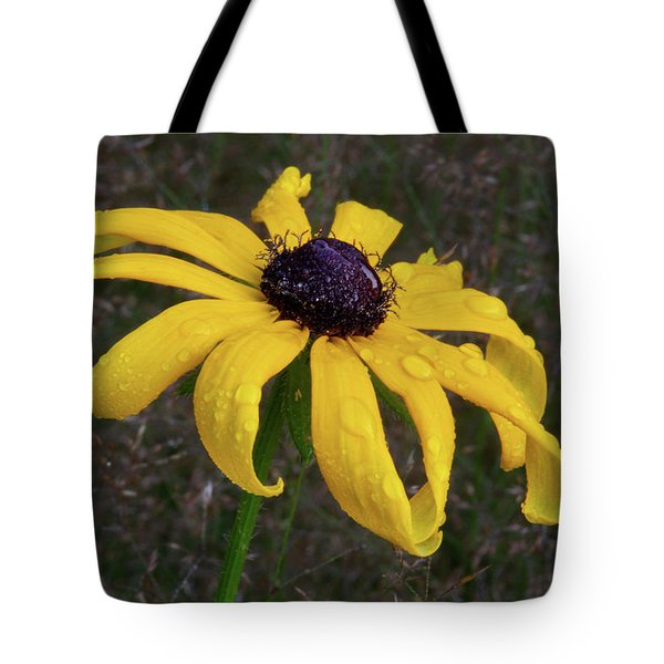 Tote Bag featuring the photograph Black Eyed Susan by Dale Kincaid