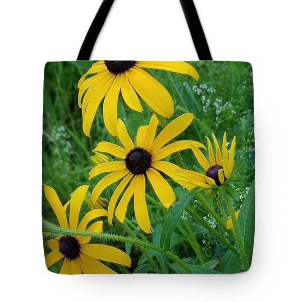 Black Eyed Susans 1 Tote Bag