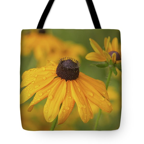 Tote Bag featuring the photograph Black-eyed Susans by Dale Kincaid