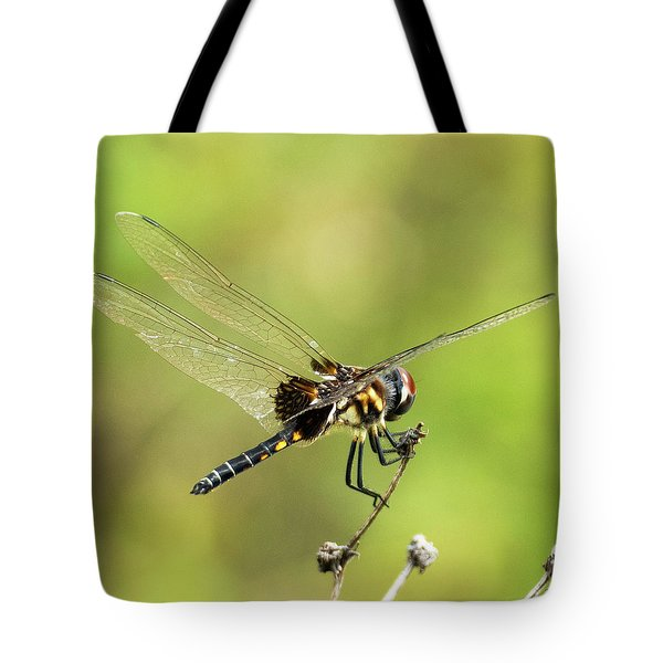 Tote Bag featuring the photograph Black Saddlebags Dragonfly by Sally Sperry