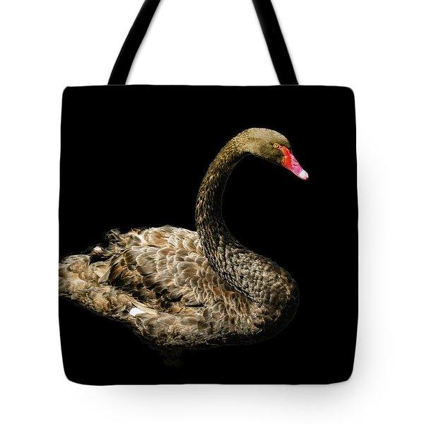 Black Swan On Black  Tote Bag
