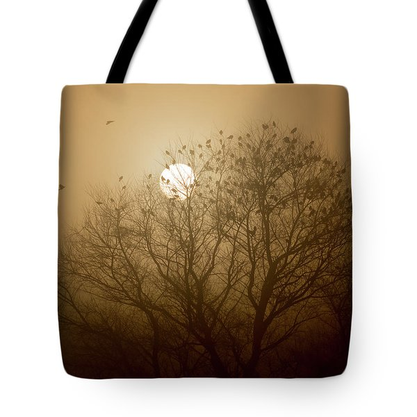 Blackbird Sunrise Tote Bag